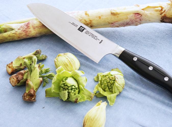 山菜のアクを抜く方法